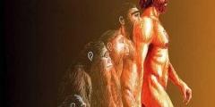 Evoluzione Umana: Anello mancante tra scimmia e uomo volutamente tralasciato?