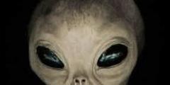 Come sono gli Alieni? forse simili a noi